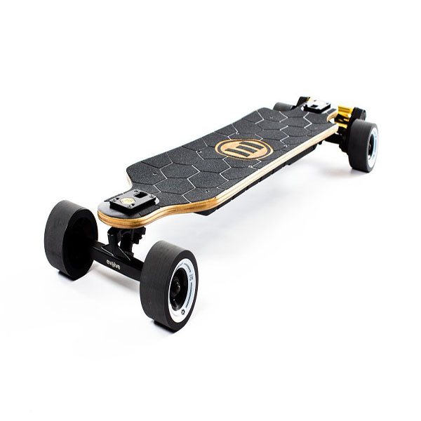 replacing-Backfire Zealot Belt Drive Electric Skateboard